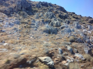 Crete is very very rocky and mountainous