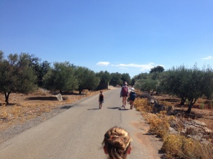 The road back to Kritsa