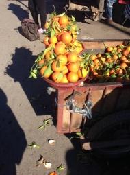 Delicious oranges