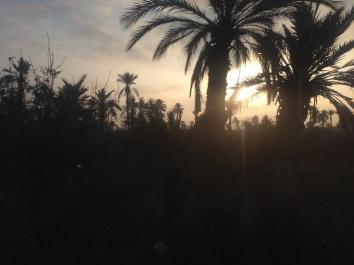Fantastic sunrise on the way to Marakkech