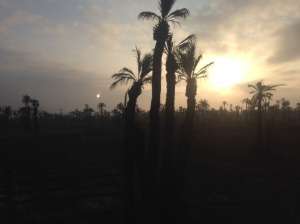 Sunrise on the way to Marakkech