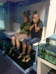 Chich thought the fishes might like the dead skin on his feet!